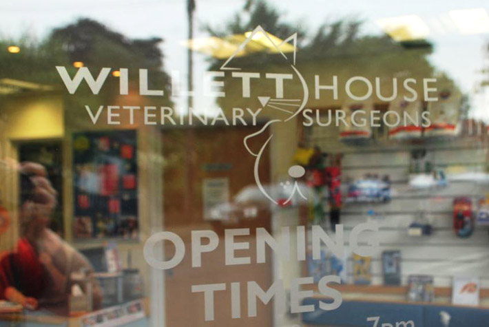 Willett House Veterinary Surgeons, Hampton